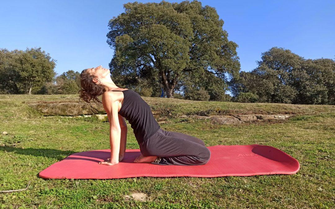 La importància de la postura